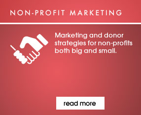 Marketing and donor strategies for non-profits both big and small.